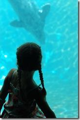 July 2009 zoo 128